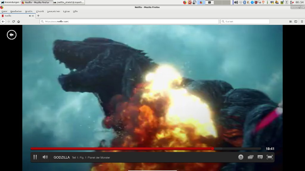 Netflix Screenshot Debian Stretch